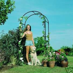 "Gardman, R350, Rose Garden Arch, 6'3"", 6 Ft, Arbor, Garden, Black, Metal, Steel, Plant Support745487003501,5024160077202"