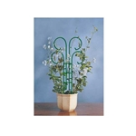 "Bosmere, Scroll Trellis, Pot Scroll Trellis, 36"" Scroll Trellis, Wire scroll trellis, L530, Wren Scroll Trellis600679001362"